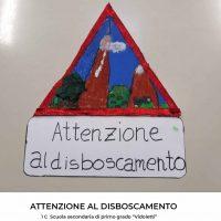 Lombardia__Varese__Vidoletti__1_C(15)